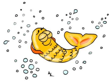 etre comme un poisson dans l'eau Les Dédexpressions