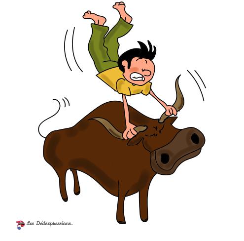 prendre-taureau-par-les-cornes
